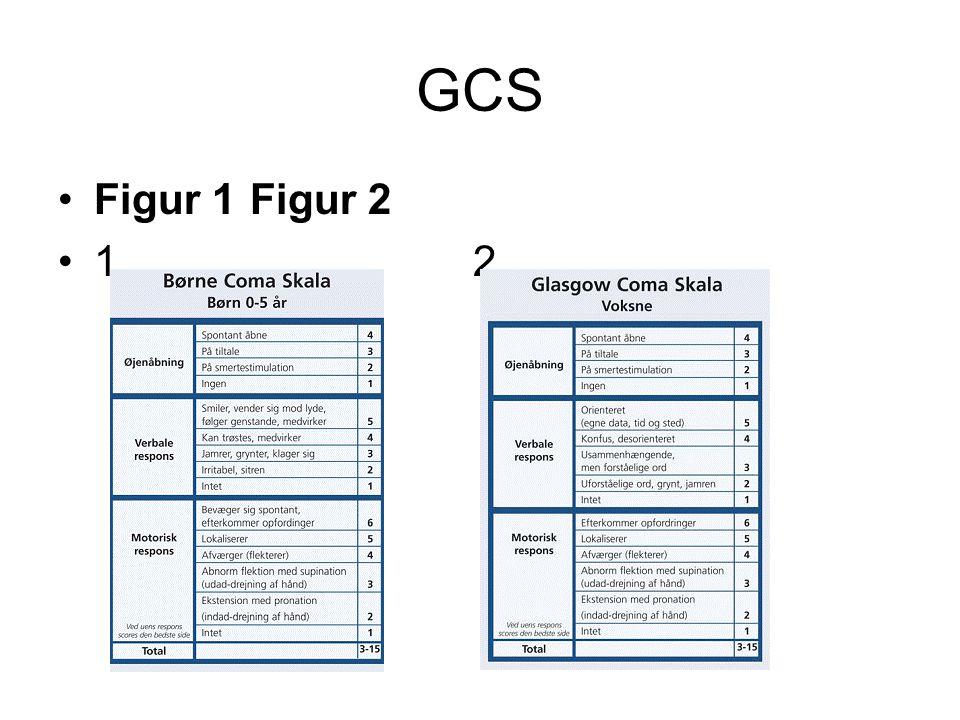 GCS Figur 1Figur 2 1 2