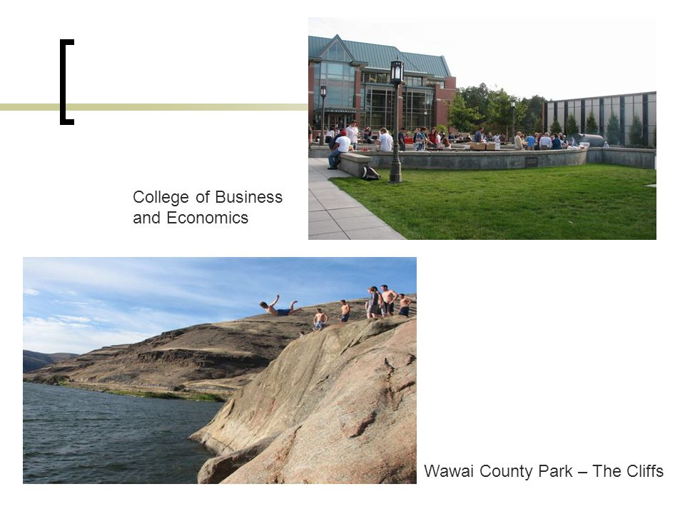 www.MScBA.frac.dk Wawai County Park – The Cliffs College of Business and Economics