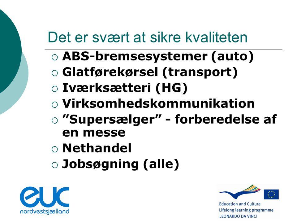 Det er svært at sikre kvaliteten  ABS-bremsesystemer (auto)  Glatførekørsel (transport)  Iværksætteri (HG)  Virksomhedskommunikation  Supersælger - forberedelse af en messe  Nethandel  Jobsøgning (alle)