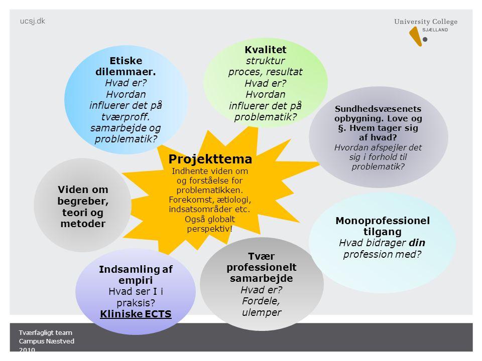 Projekttema Indhente viden om og forståelse for problematikken.