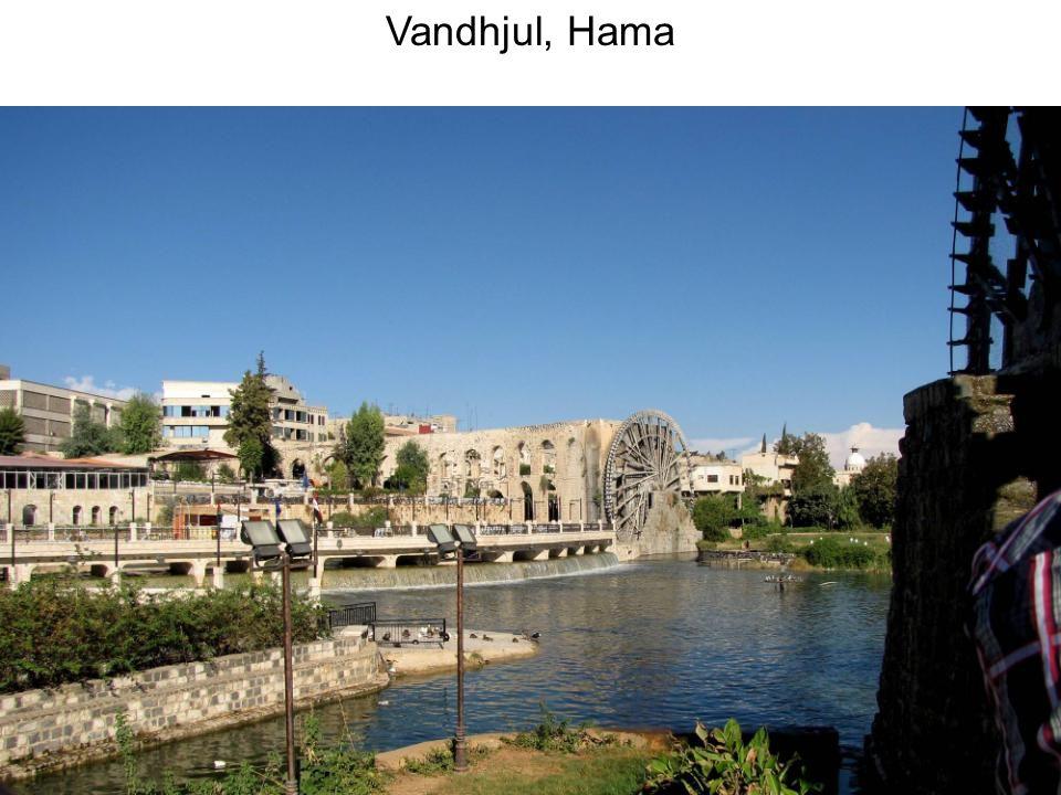 Vandhjul, Hama