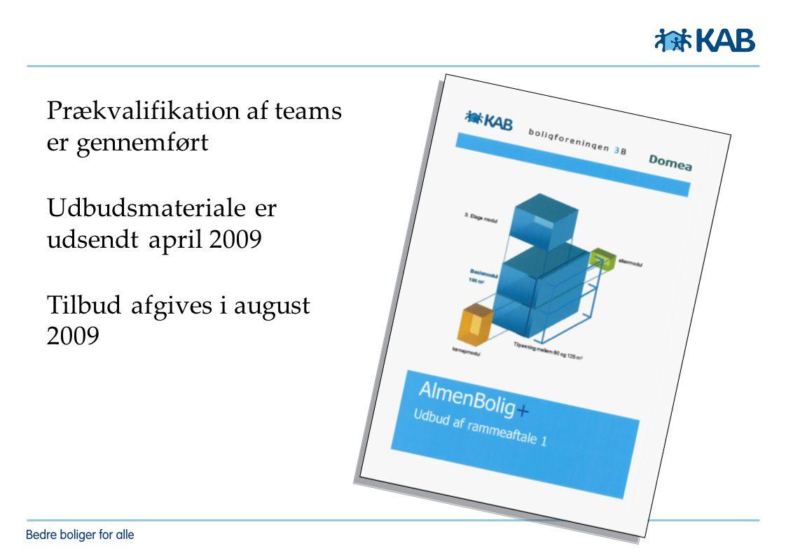Prækvalifikation af teams er gennemført Udbudsmateriale er udsendt april 2009 Tilbud afgives i august 2009