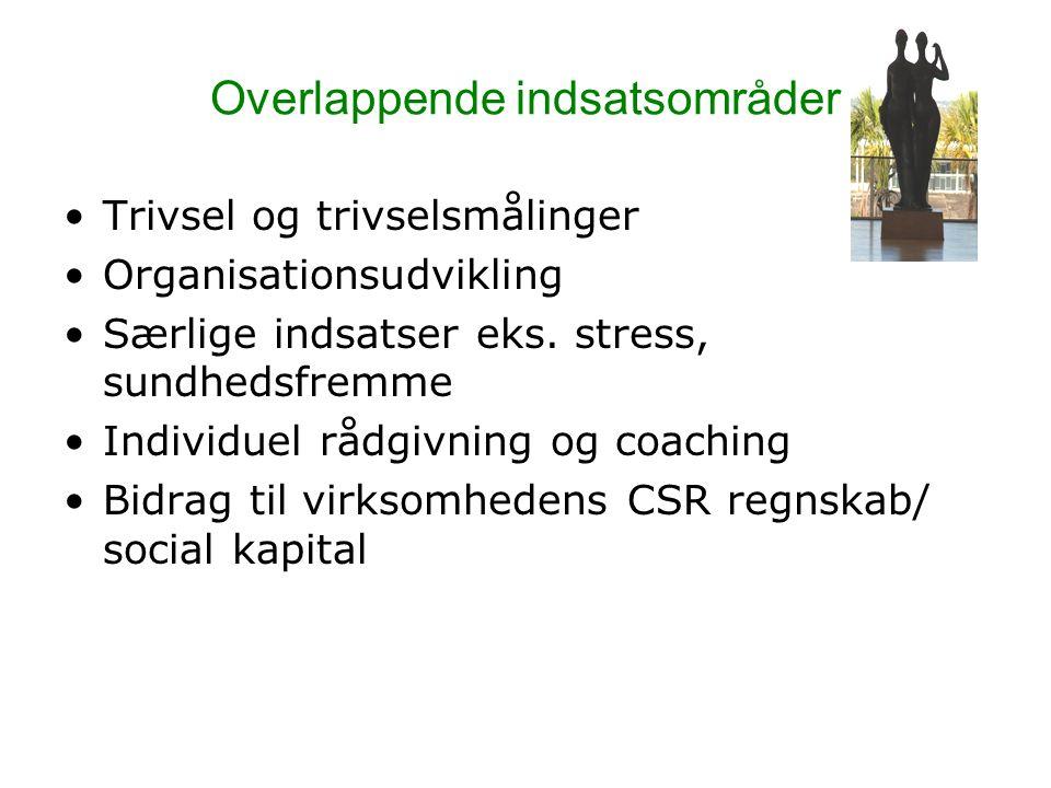Overlappende indsatsområder Trivsel og trivselsmålinger Organisationsudvikling Særlige indsatser eks.