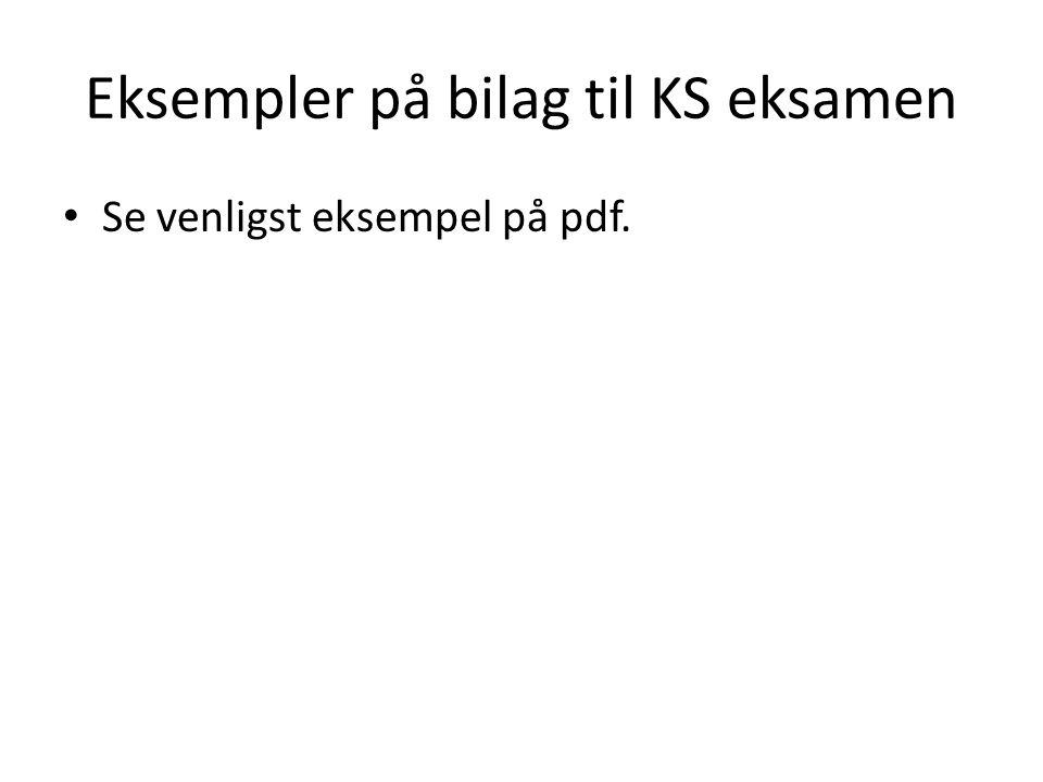 Eksempler på bilag til KS eksamen Se venligst eksempel på pdf.