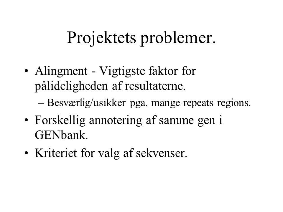 Projektets problemer. Alingment - Vigtigste faktor for pålideligheden af resultaterne.