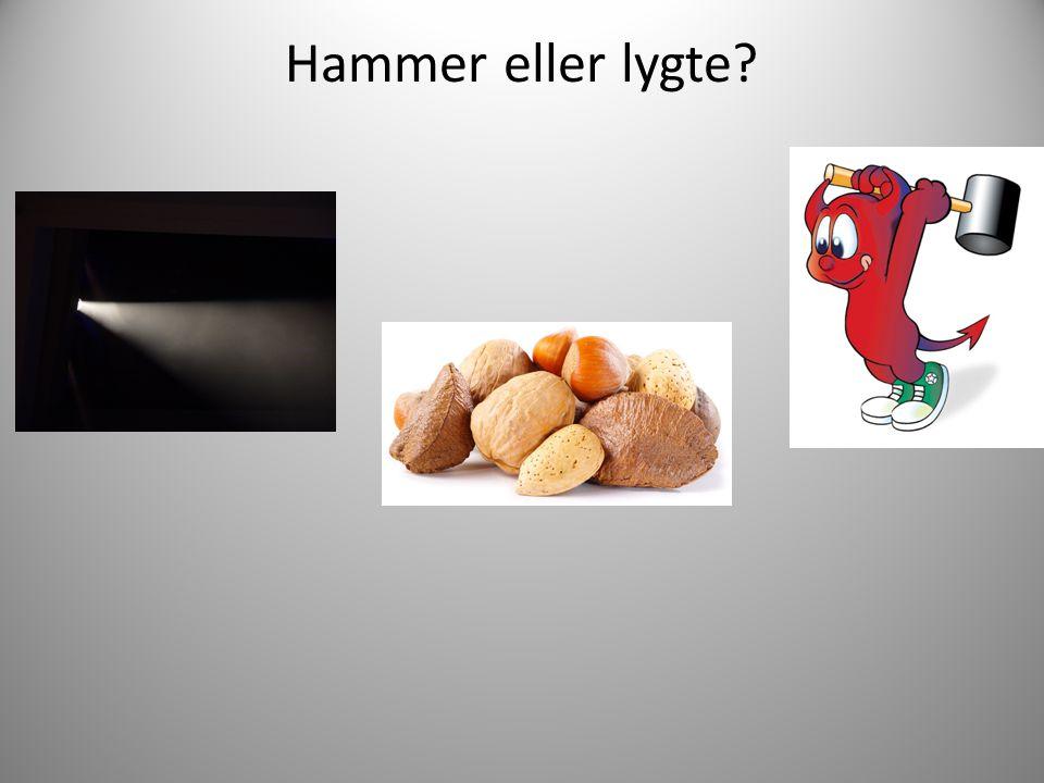 Hammer eller lygte