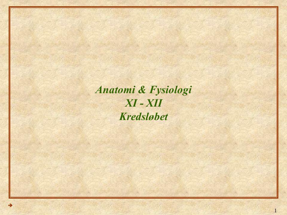 1 Anatomi & Fysiologi XI - XII Kredsløbet 