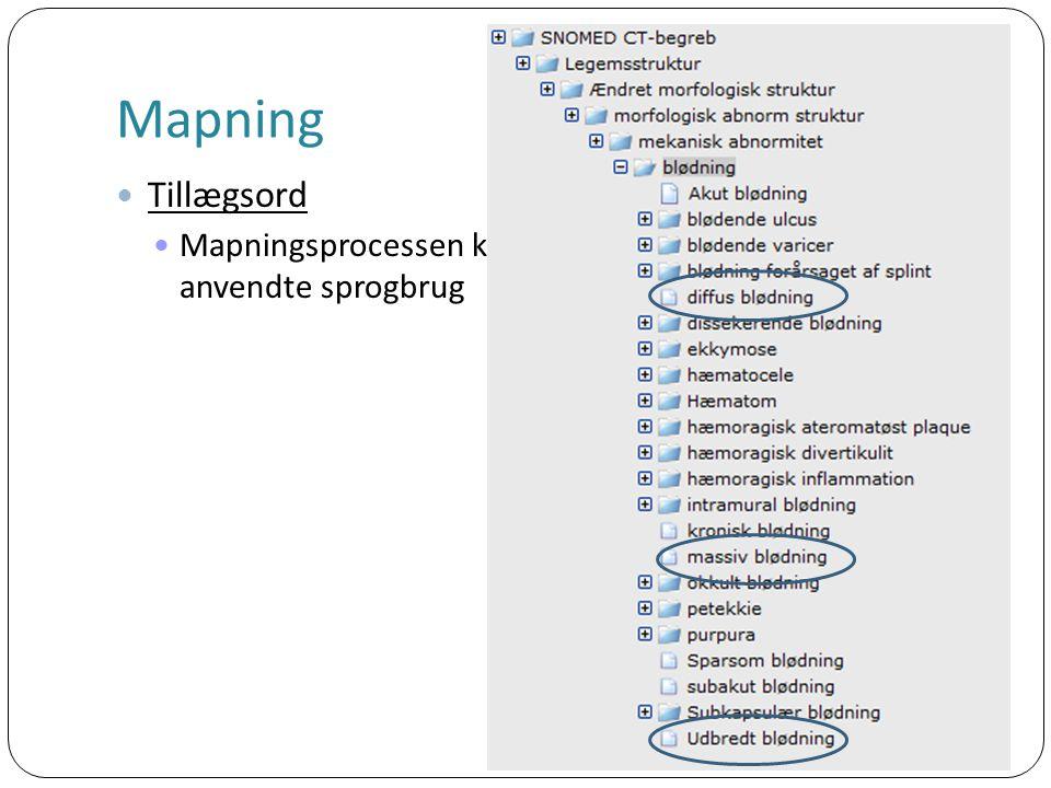 Mapning Tillægsord Mapningsprocessen kan medføre en ændring af det i dag anvendte sprogbrug