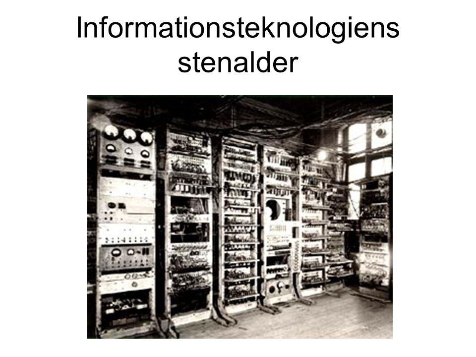 Informationsteknologiens stenalder