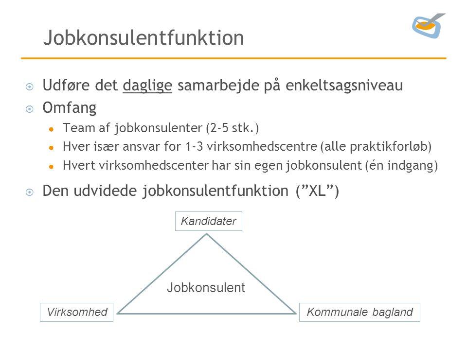 Jobkonsulentfunktion  Udføre det daglige samarbejde på enkeltsagsniveau  Omfang ● Team af jobkonsulenter (2-5 stk.) ● Hver især ansvar for 1-3 virksomhedscentre (alle praktikforløb) ● Hvert virksomhedscenter har sin egen jobkonsulent (én indgang)  Den udvidede jobkonsulentfunktion ( XL ) Kommunale baglandVirksomhed Kandidater Jobkonsulent