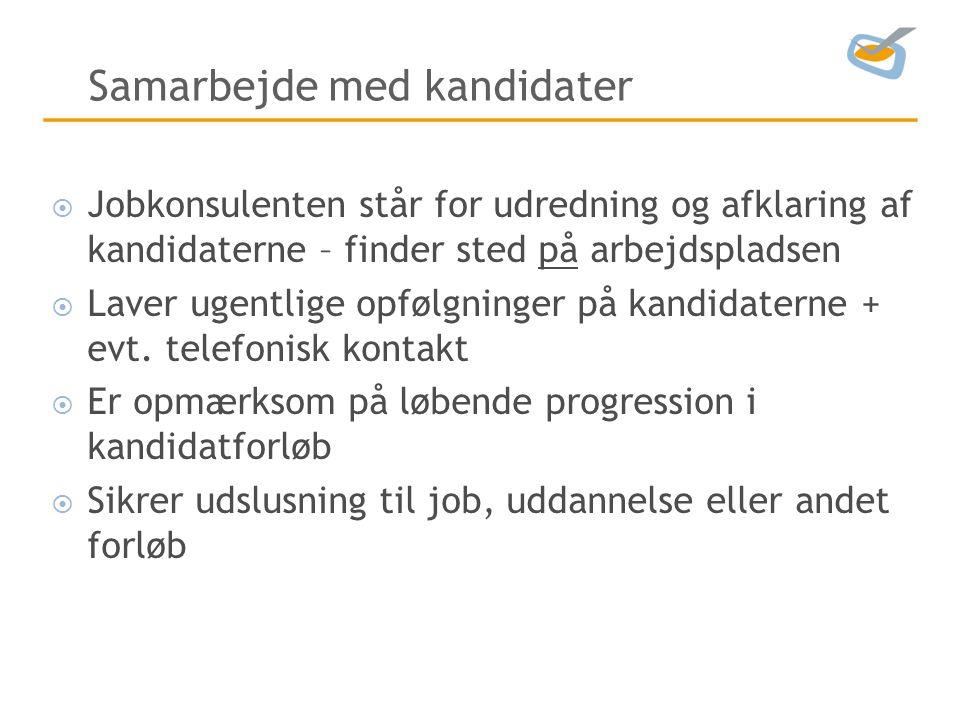 Samarbejde med kandidater  Jobkonsulenten står for udredning og afklaring af kandidaterne – finder sted på arbejdspladsen  Laver ugentlige opfølgninger på kandidaterne + evt.