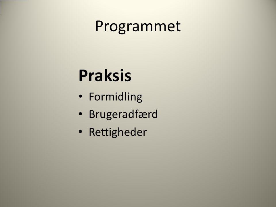 Programmet Praksis Formidling Brugeradfærd Rettigheder