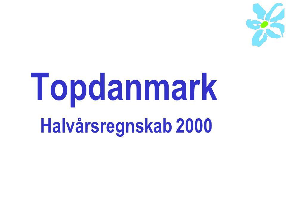 Topdanmark Halvårsregnskab 2000