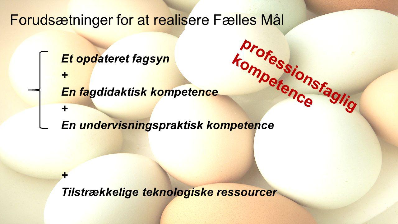 Forudsætninger for at realisere Fælles Mål Et opdateret fagsyn + En fagdidaktisk kompetence + En undervisningspraktisk kompetence + Tilstrækkelige teknologiske ressourcer professionsfaglig kompetence