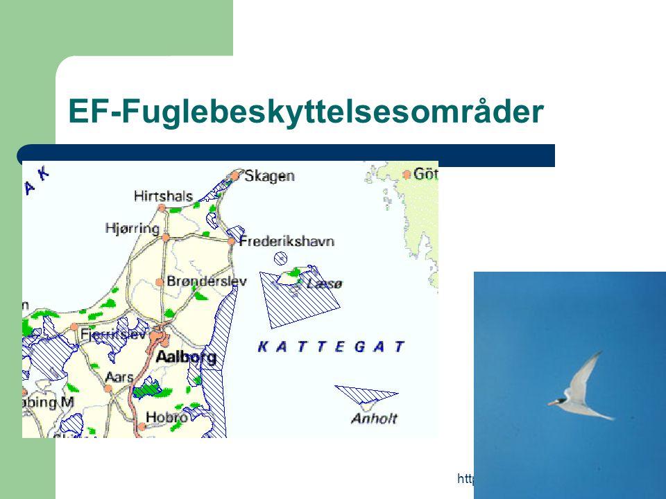 http://natura2000.sns.dk EF-Fuglebeskyttelsesområder