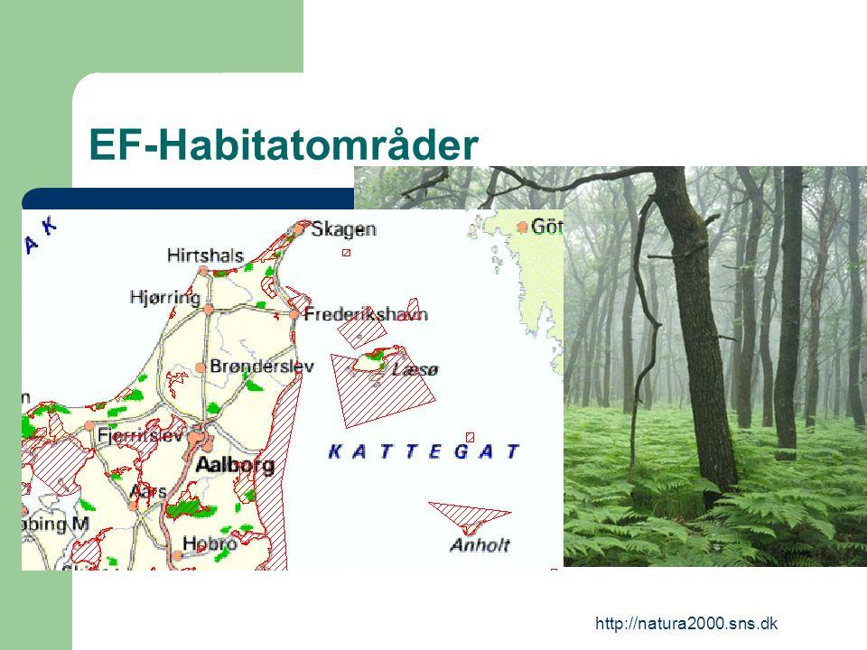 http://natura2000.sns.dk EF-Habitatområder