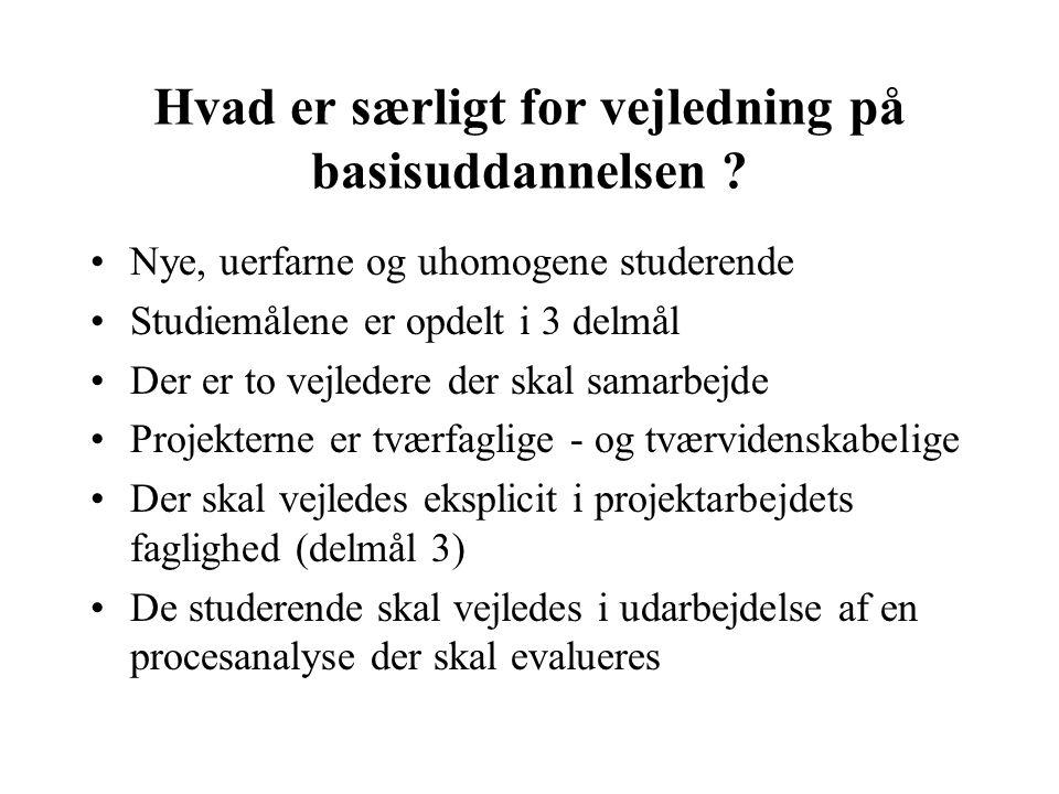 P0 - projektet Fra Studieordningen..