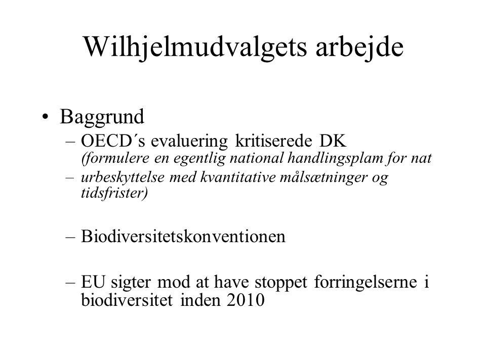 Wilhjelmudvalgets arbejde Baggrund –OECD´s evaluering kritiserede DK (formulere en egentlig national handlingsplam for nat –urbeskyttelse med kvantitative målsætninger og tidsfrister) –Biodiversitetskonventionen –EU sigter mod at have stoppet forringelserne i biodiversitet inden 2010