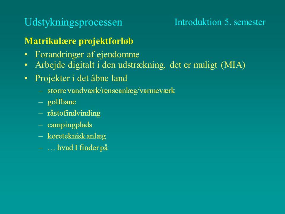 Semestrets struktur Faste rammer og parallelitet i indhold Klare termnier Skema - pres på lokaler, tilstræbt 2 hele projektdage pr.