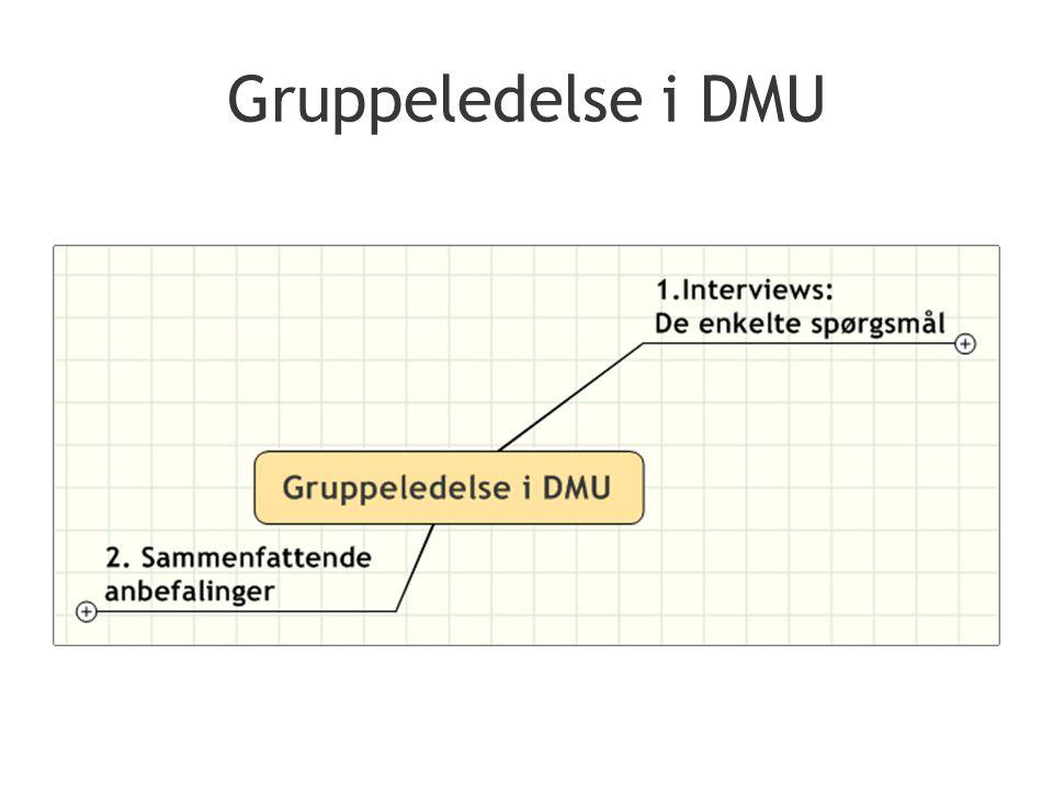 Gruppeledelse i DMU