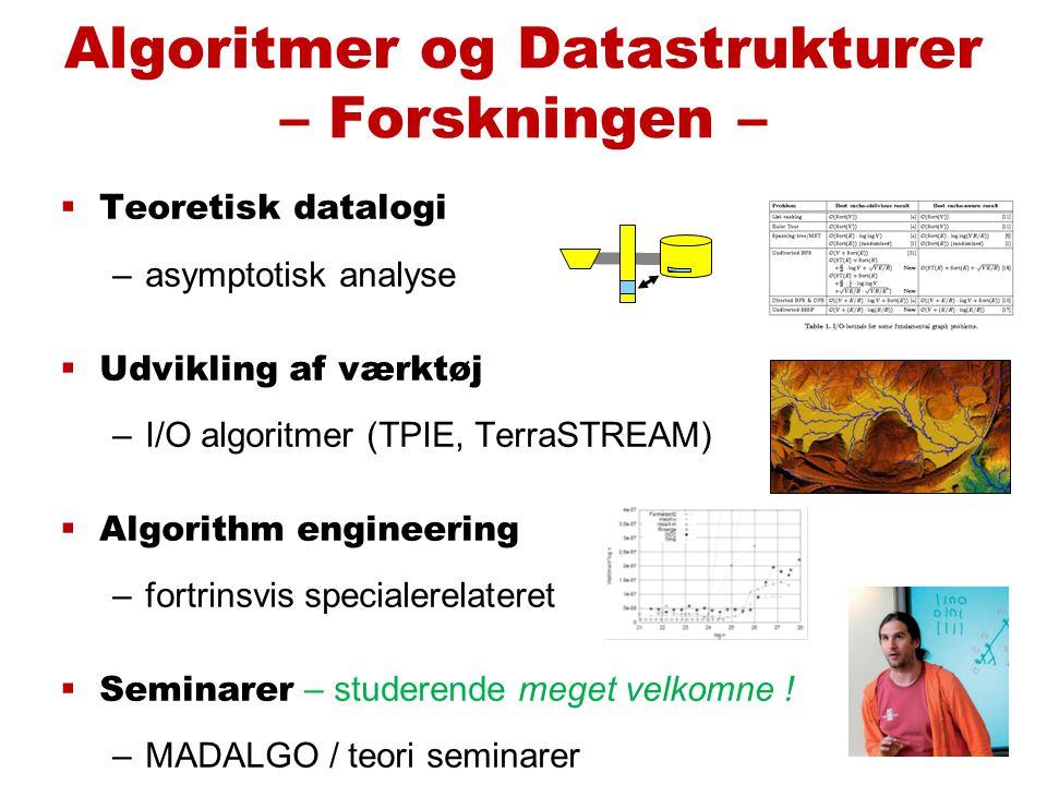  Teoretisk datalogi –asymptotisk analyse  Udvikling af værktøj –I/O algoritmer (TPIE, TerraSTREAM)  Algorithm engineering –fortrinsvis specialerelateret  Seminarer – studerende meget velkomne .