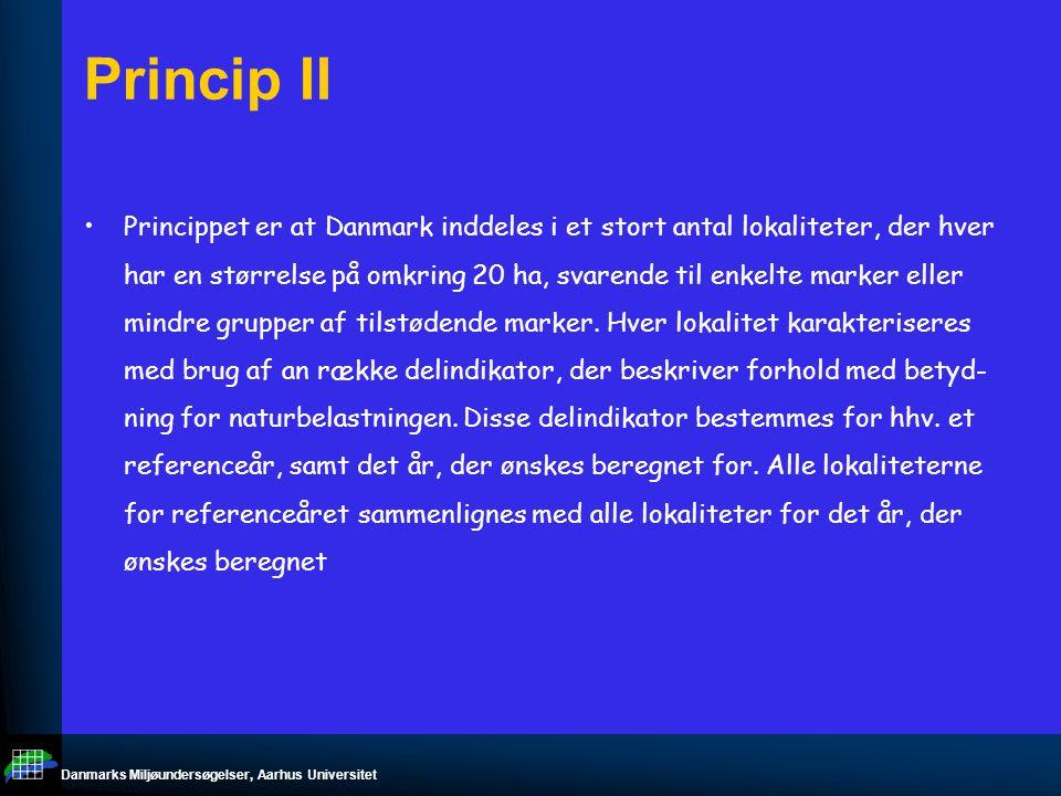 Danmarks Miljøundersøgelser, Aarhus Universitet Princip II Princippet er at Danmark inddeles i et stort antal lokaliteter, der hver har en størrelse på omkring 20 ha, svarende til enkelte marker eller mindre grupper af tilstødende marker.