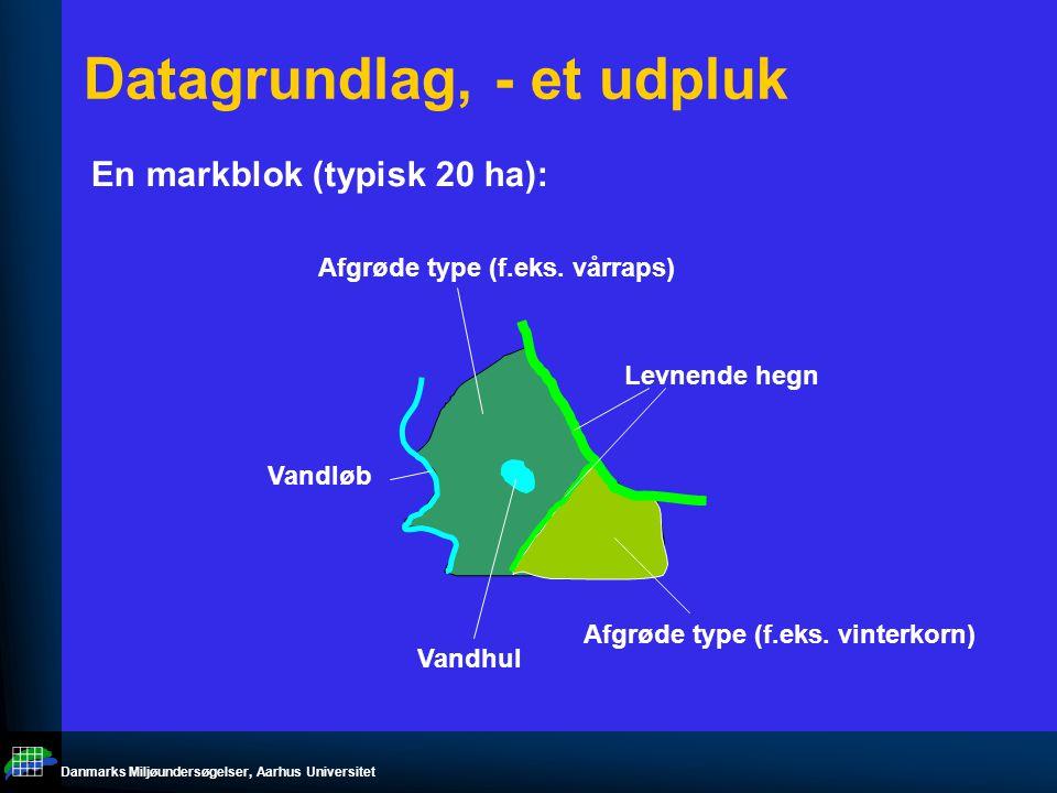 Danmarks Miljøundersøgelser, Aarhus Universitet Datagrundlag, - et udpluk En markblok (typisk 20 ha): Levnende hegn Afgrøde type (f.eks.