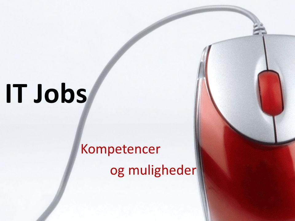 IT Jobs Kompetencer og muligheder
