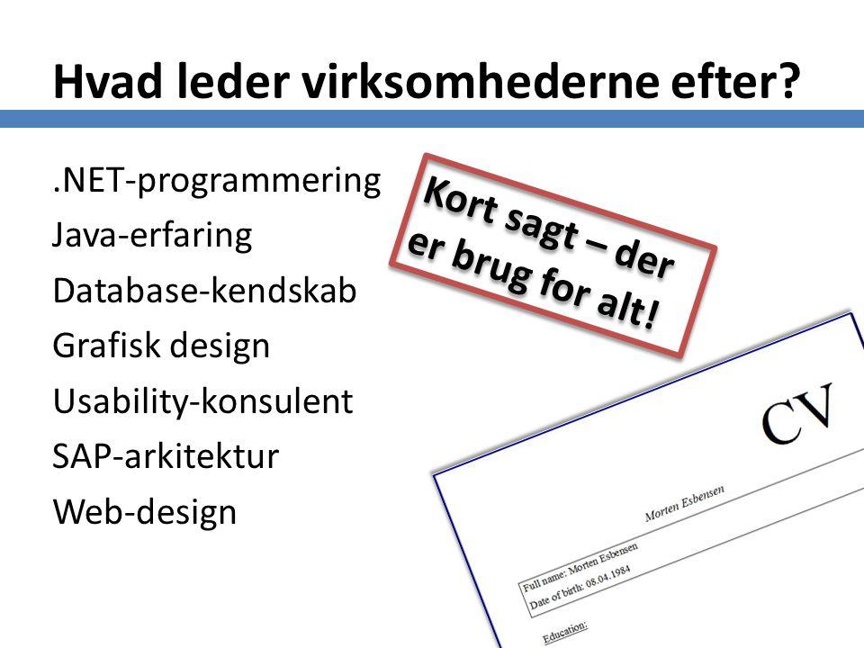 Hvad leder virksomhederne efter .NET-programmering Java-erfaring Database-kendskab Grafisk design Usability-konsulent SAP-arkitektur Web-design Kort sagt – der er brug for alt!