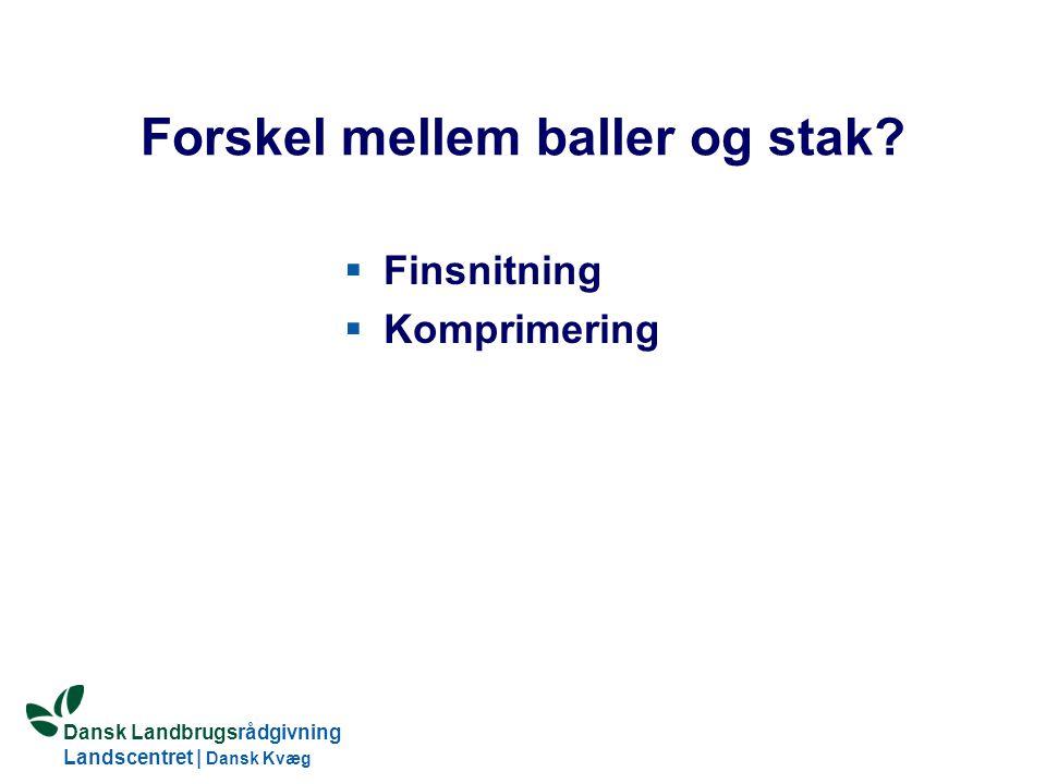 Dansk Landbrugsrådgivning Landscentret   Dansk Kvæg S:\SUNDFODE\HBB\PowerPoint\Grovfoderseminar 2005.ppt Forskel mellem baller og stak.