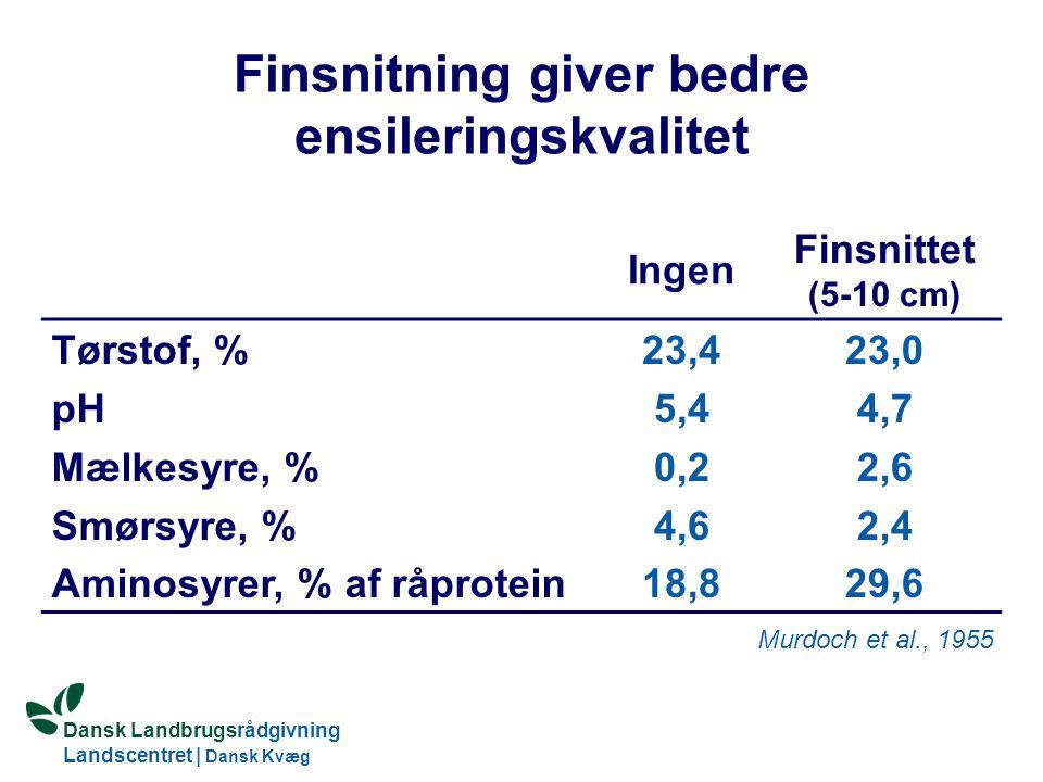 Dansk Landbrugsrådgivning Landscentret   Dansk Kvæg S:\SUNDFODE\HBB\PowerPoint\Grovfoderseminar 2005.ppt Finsnitning giver bedre ensileringskvalitet Ingen Finsnittet (5-10 cm) Tørstof, % pH Mælkesyre, % Smørsyre, % Aminosyrer, % af råprotein 23,4 5,4 0,2 4,6 18,8 23,0 4,7 2,6 2,4 29,6 Murdoch et al., 1955