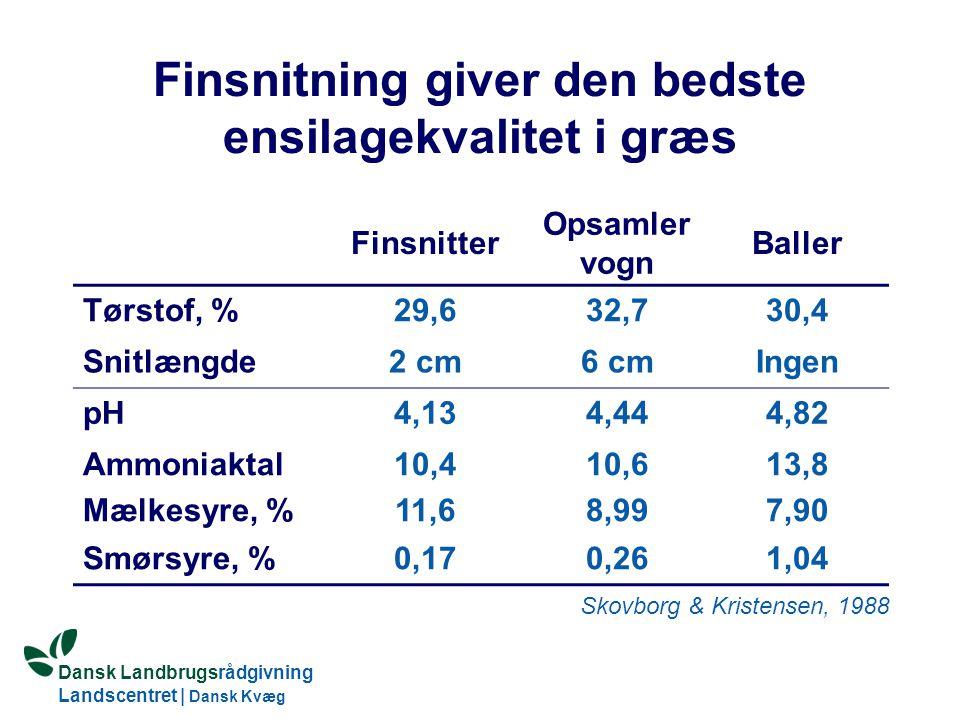 Dansk Landbrugsrådgivning Landscentret | Dansk Kvæg S:\SUNDFODE\HBB\PowerPoint\Grovfoderseminar 2005.ppt Finsnitning giver den bedste ensilagekvalitet i græs Finsnitter Opsamler vogn Baller Tørstof, %29,632,730,4 Snitlængde2 cm6 cmIngen pH4,134,444,82 Ammoniaktal Mælkesyre, % 10,4 11,6 10,6 8,99 13,8 7,90 Smørsyre, %0,170,261,04 Skovborg & Kristensen, 1988