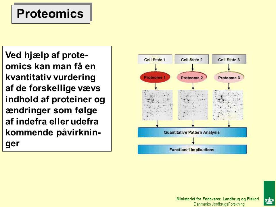 Proteomics Ved hjælp af prote- omics kan man få en kvantitativ vurdering af de forskellige vævs indhold af proteiner og ændringer som følge af indefra eller udefra kommende påvirknin- ger Ministeriet for Fødevarer, Landbrug og Fiskeri Danmarks JordbrugsForskning