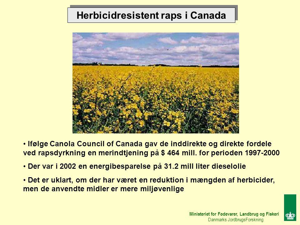 Herbicidresistent raps i Canada Ministeriet for Fødevarer, Landbrug og Fiskeri Danmarks JordbrugsForskning Ifølge Canola Council of Canada gav de inddirekte og direkte fordele ved rapsdyrkning en merindtjening på $ 464 mill.