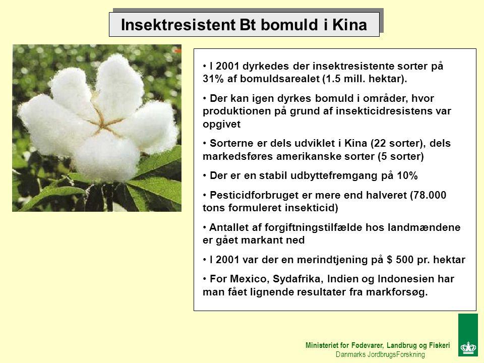 Insektresistent Bt bomuld i Kina I 2001 dyrkedes der insektresistente sorter på 31% af bomuldsarealet (1.5 mill.