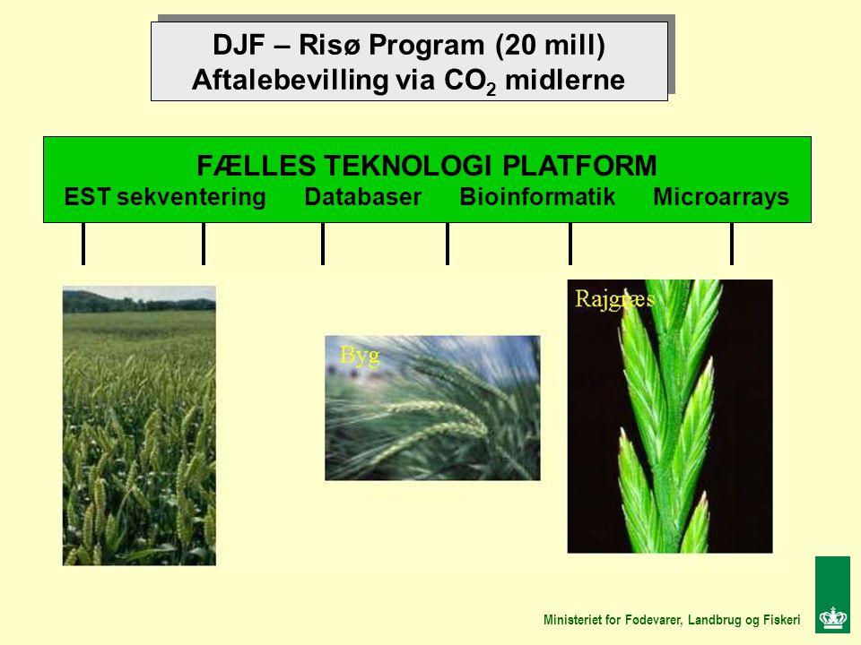 DJF – Risø Program (20 mill) Aftalebevilling via CO 2 midlerne DJF – Risø Program (20 mill) Aftalebevilling via CO 2 midlerne FÆLLES TEKNOLOGI PLATFORM EST sekventering Databaser Bioinformatik Microarrays Ministeriet for Fødevarer, Landbrug og Fiskeri