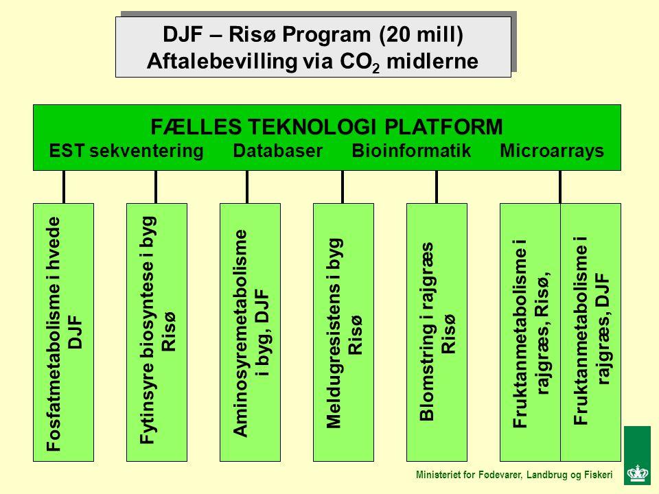 DJF – Risø Program (20 mill) Aftalebevilling via CO 2 midlerne DJF – Risø Program (20 mill) Aftalebevilling via CO 2 midlerne FÆLLES TEKNOLOGI PLATFORM EST sekventering Databaser Bioinformatik Microarrays Fosfatmetabolisme i hvede DJF Aminosyremetabolisme i byg, DJF Fytinsyre biosyntese i byg Risø Meldugresistens i byg Risø Blomstring i rajgræs Risø Fruktanmetabolisme i rajgræs, Risø, Fruktanmetabolisme i rajgræs, DJF Ministeriet for Fødevarer, Landbrug og Fiskeri
