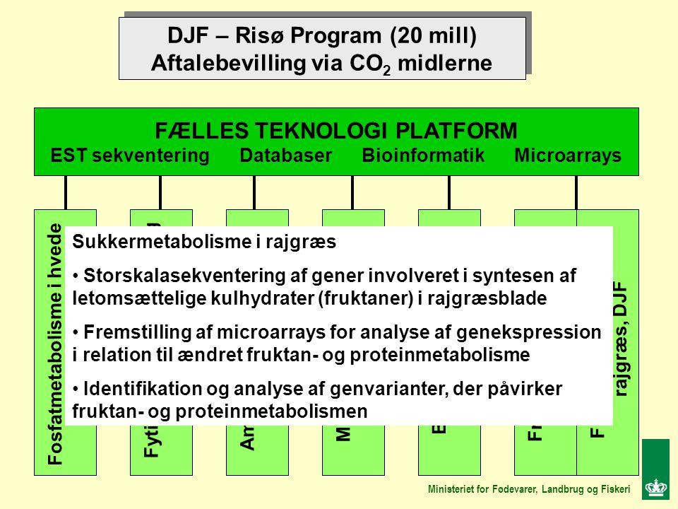 DJF – Risø Program (20 mill) Aftalebevilling via CO 2 midlerne DJF – Risø Program (20 mill) Aftalebevilling via CO 2 midlerne FÆLLES TEKNOLOGI PLATFORM EST sekventering Databaser Bioinformatik Microarrays Fosfatmetabolisme i hvede DJF Aminosyremetabolisme i byg, DJF Fytinsyre biosyntese i byg Risø Meldugresistens i byg Risø Blomstring i rajgræs Risø Fruktanmetabolisme i rajgræs, Risø, Fruktanmetabolisme i rajgræs, DJF Ministeriet for Fødevarer, Landbrug og Fiskeri Sukkermetabolisme i rajgræs Storskalasekventering af gener involveret i syntesen af letomsættelige kulhydrater (fruktaner) i rajgræsblade Fremstilling af microarrays for analyse af genekspression i relation til ændret fruktan- og proteinmetabolisme Identifikation og analyse af genvarianter, der påvirker fruktan- og proteinmetabolismen