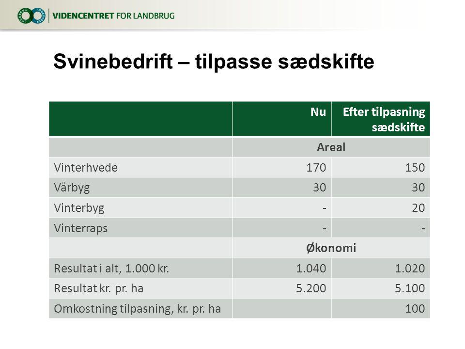 NuEfter tilpasning sædskifte Areal Vinterhvede170150 Vårbyg30 Vinterbyg-20 Vinterraps-- Økonomi Resultat i alt, 1.000 kr.1.0401.020 Resultat kr.