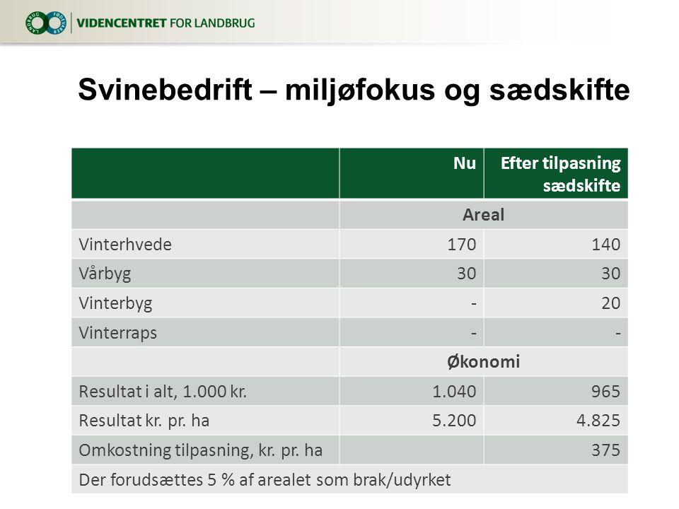 NuEfter tilpasning sædskifte Areal Vinterhvede170140 Vårbyg30 Vinterbyg-20 Vinterraps-- Økonomi Resultat i alt, 1.000 kr.1.040965 Resultat kr.