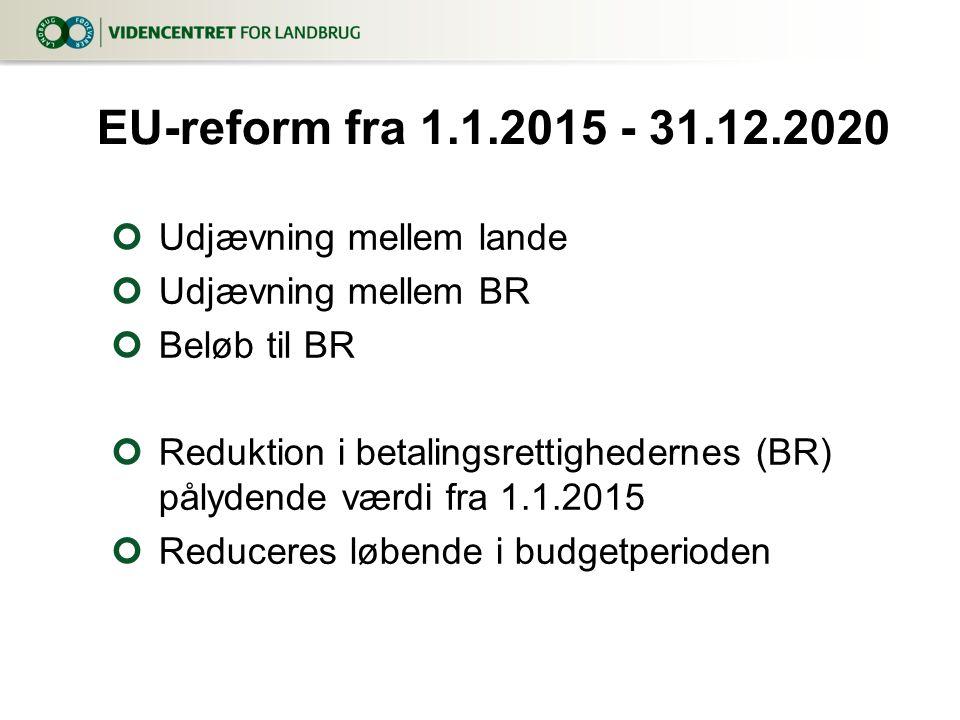 Udjævning mellem lande Udjævning mellem BR Beløb til BR Reduktion i betalingsrettighedernes (BR) pålydende værdi fra 1.1.2015 Reduceres løbende i budgetperioden EU-reform fra 1.1.2015 - 31.12.2020