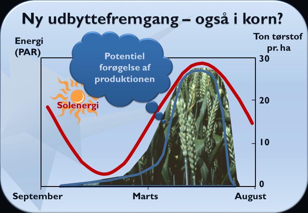 SeptemberMartsAugust Solenergi Energi (PAR) Ton tørstof pr.