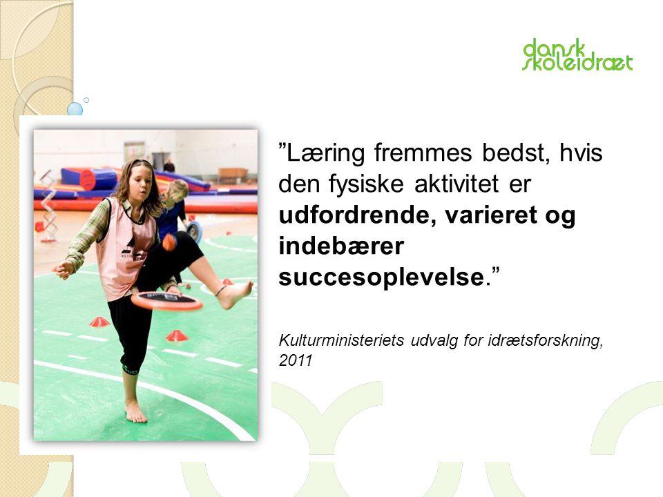 Læring fremmes bedst, hvis den fysiske aktivitet er udfordrende, varieret og indebærer succesoplevelse. Kulturministeriets udvalg for idrætsforskning, 2011