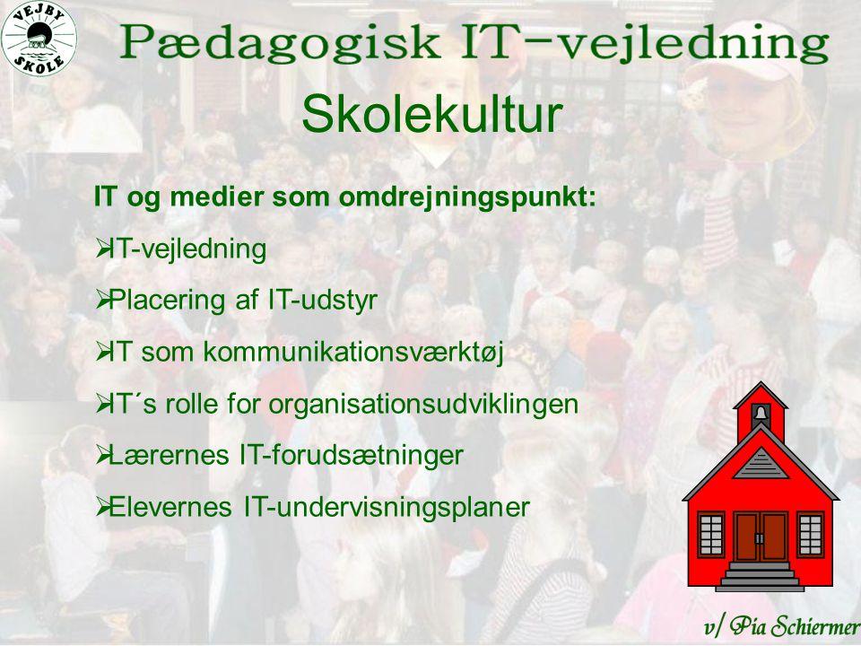 Skolekultur IT og medier som omdrejningspunkt:  IT-vejledning  Placering af IT-udstyr  IT som kommunikationsværktøj  IT´s rolle for organisationsudviklingen  Lærernes IT-forudsætninger  Elevernes IT-undervisningsplaner