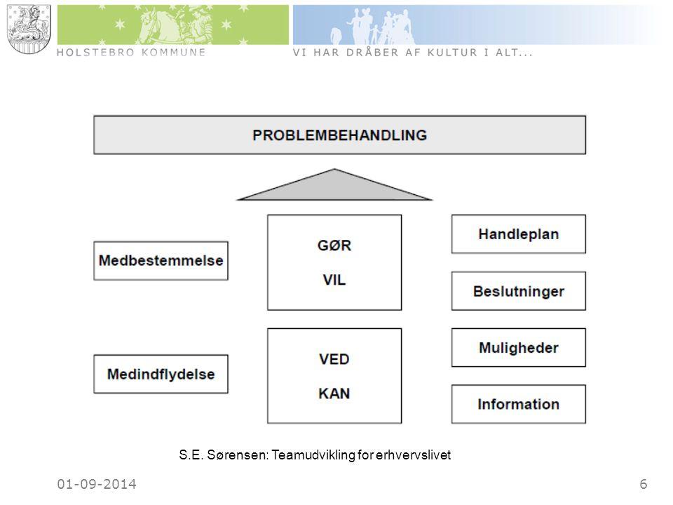 01-09-20146 S.E. Sørensen: Teamudvikling for erhvervslivet