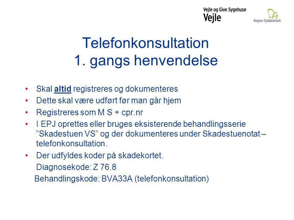Telefonkonsultation 1.