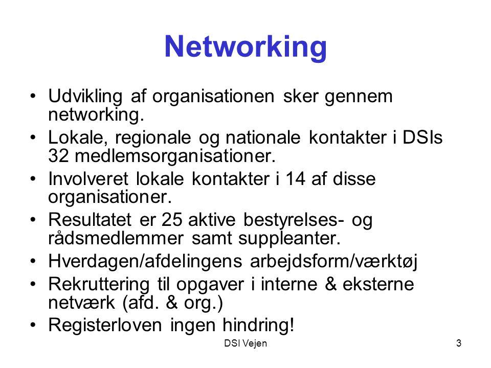 DSI Vejen3 Networking Udvikling af organisationen sker gennem networking.