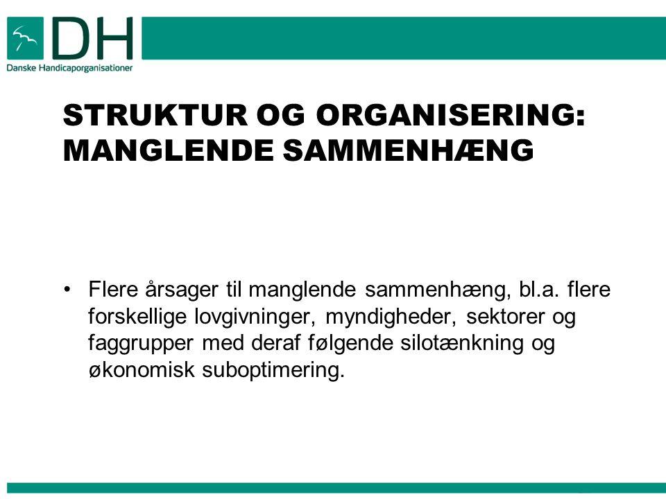 STRUKTUR OG ORGANISERING: MANGLENDE SAMMENHÆNG Flere årsager til manglende sammenhæng, bl.a.