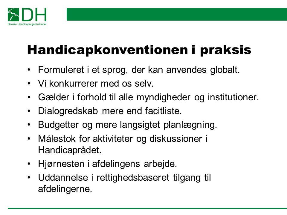 Handicapkonventionen i praksis Formuleret i et sprog, der kan anvendes globalt.