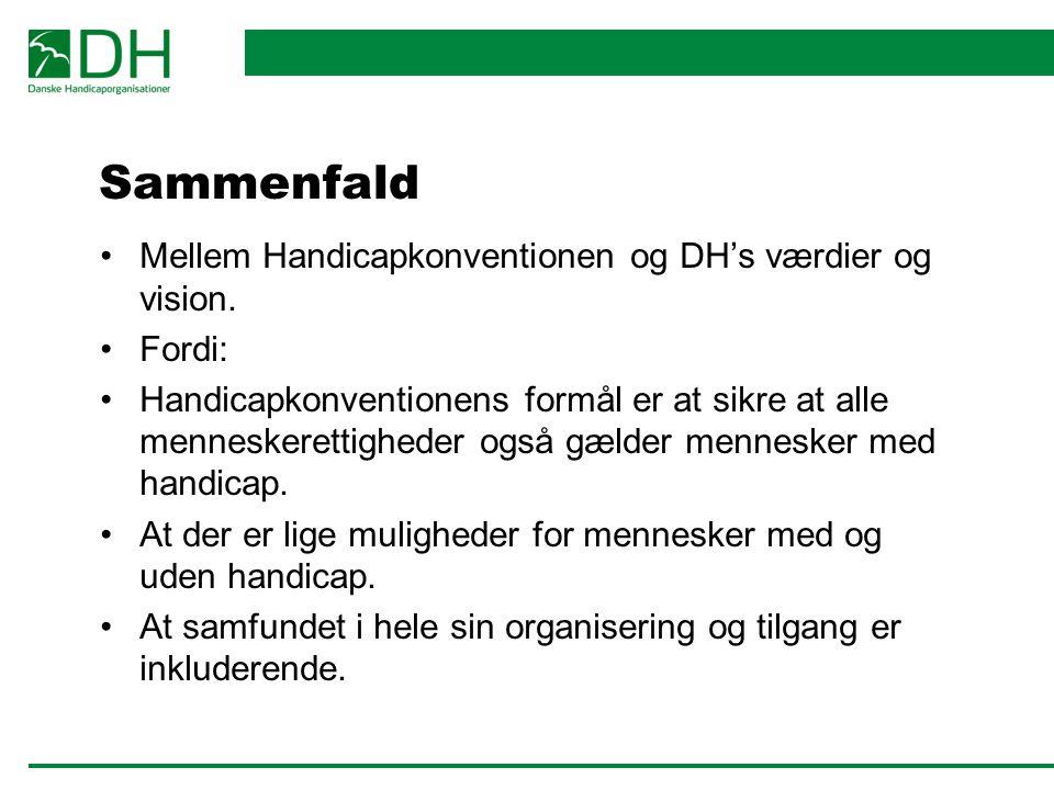 Sammenfald Mellem Handicapkonventionen og DH's værdier og vision.